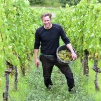 Weinbau Kraemer